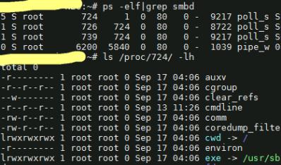 Linux 查看进程的可执行文件路径